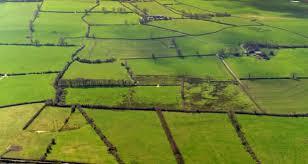 irishfarm